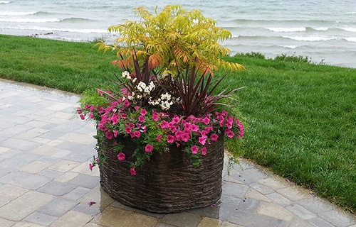Decorative Concrete Planter